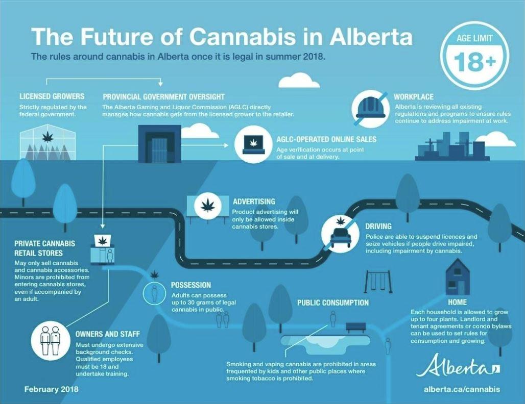 Alberta Infographic